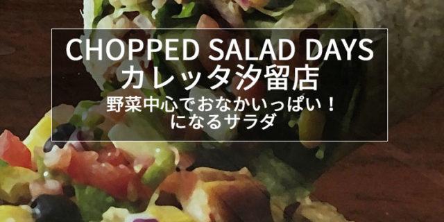 CHOPPED SALAF DAYS カレッタ汐留店